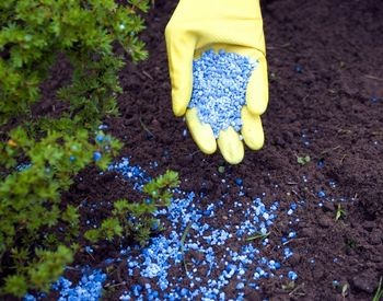 effect of organic fertilizer on soil