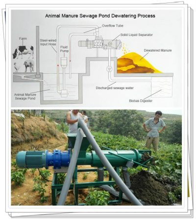 manure dewatering process